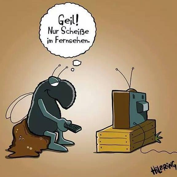 Geil! Nur Scheisse im Fernsehen.